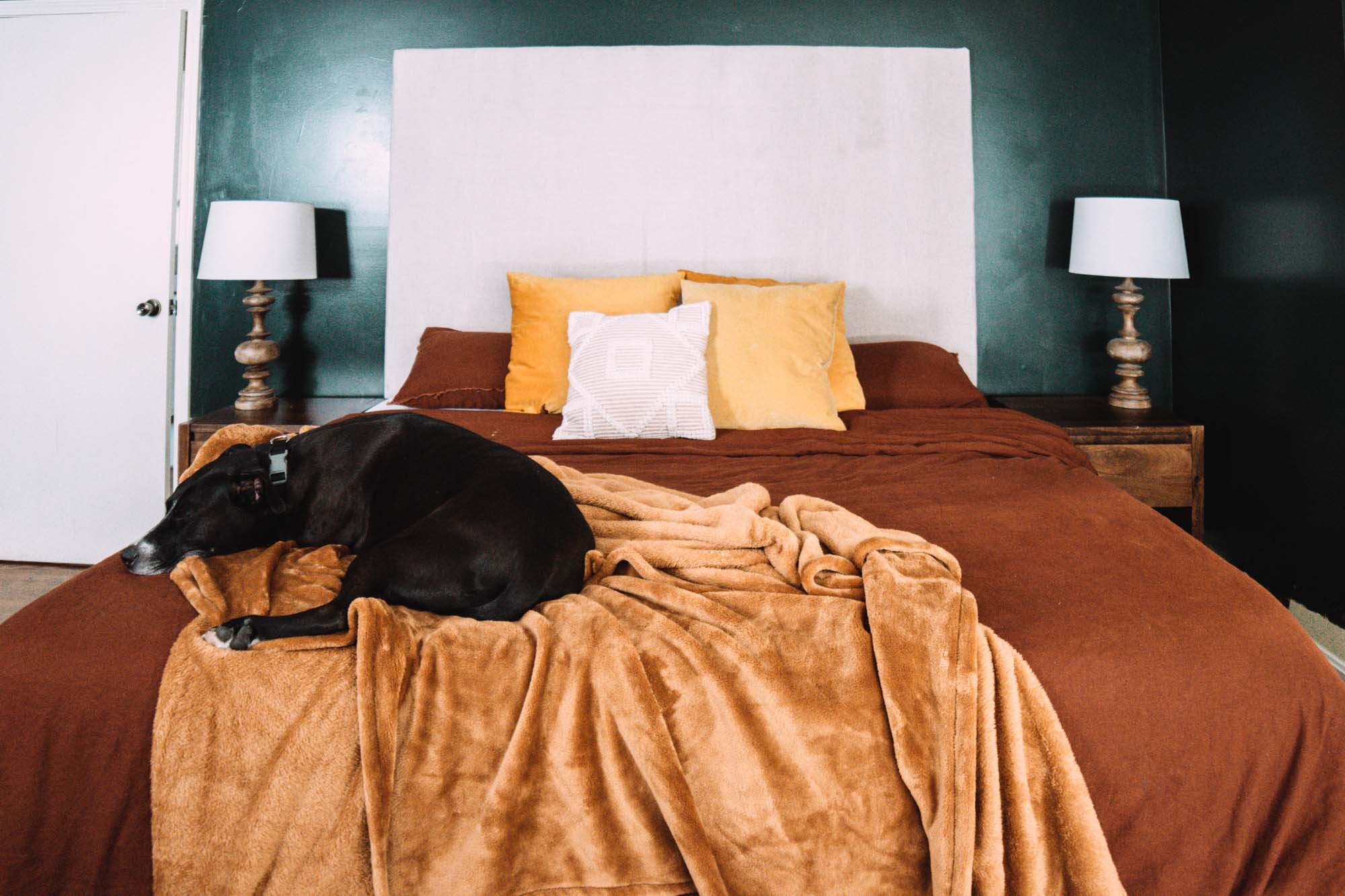 An Adjustable Split King Mattress in a flat position with bedding added and a dog laying on it.